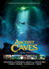 Poster: Ancient Caves