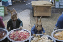PeterRabbit2_12.jpg