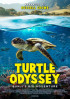 Poster: Turtle Odyssey