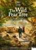 Poster: The Wild Pear Tree